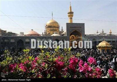 www.dustaan.com تصاویر: شست و شوی گنبد مطهر رضوی