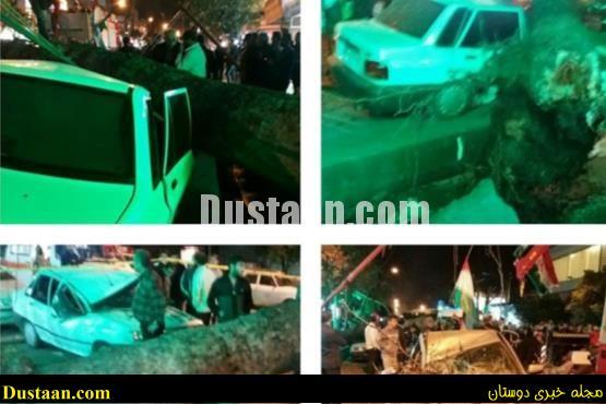 www.dustaan.com سقوط درخت بر روی پراید حادثه افرید +تصاویر