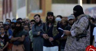 ۱۸ داعشی در استان صلاح الدین عراق به هلاکت رسید