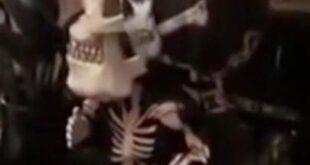 ترس زوج جوان از این عروسک شیطانی! +عکس