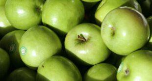 پیشگیری از پوکی استخوان و مقابله با پیری با مصرف سیب سبز!