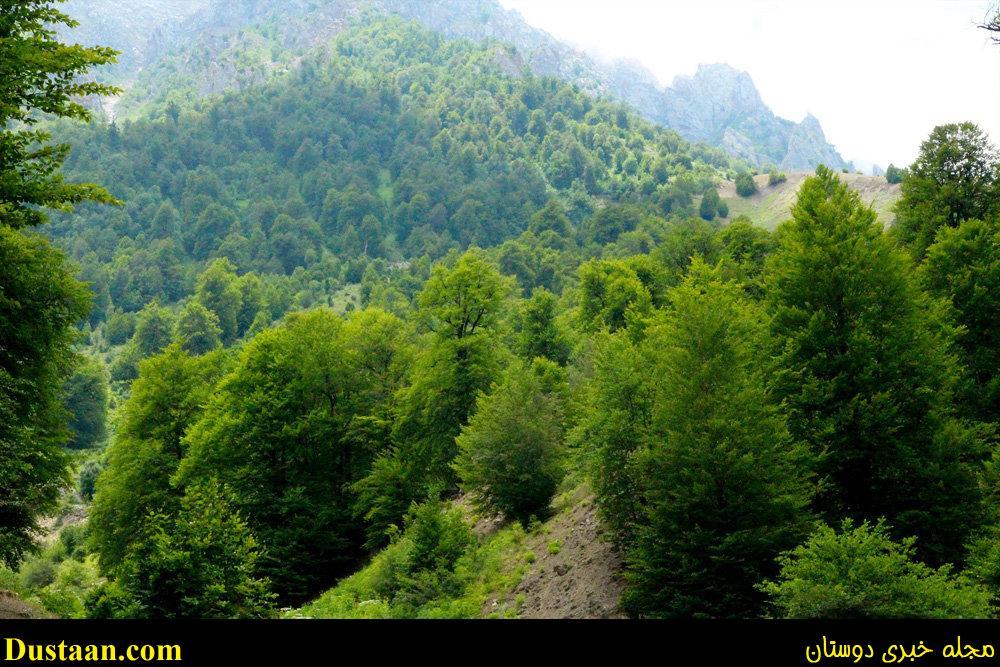 www.dustaan.com تصاویری فوق العاده دیدنی از طبیعت زیبای سواد کوه