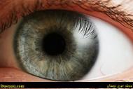 تشخیص آلزایمر از روی حالت چشم!