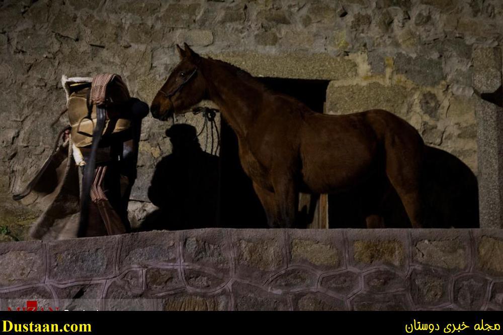 جشنواره عبور از آتش با اسب در اسپانیا +تصاویر