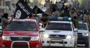 خودرو های مورد علاقه داعش +عکس