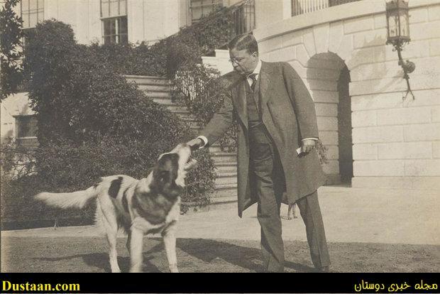 www.dustaan.com تصاویر: علاقه روسای جمهور آمریکا به نگهداری سگ و گربه