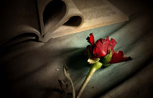 www.dustaan.com اس ام اس های احساسی و عاشقانه جدید (1)