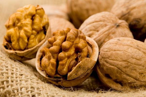 www.dustaan.com روزانه 50 گرم از این ماده غذایی بخورید
