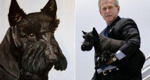 سگ، بهترین دوست روسای جمهور+ عکس