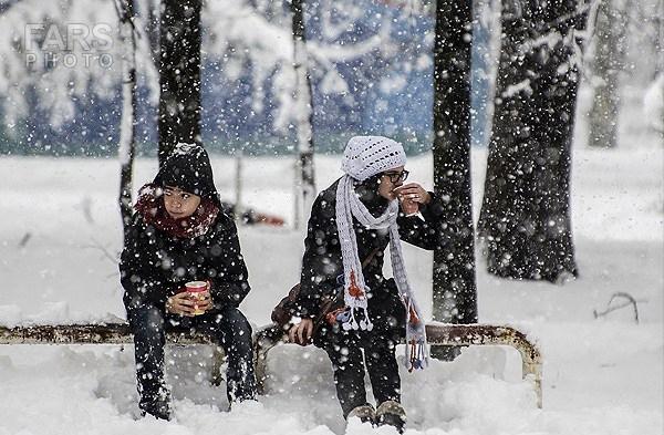 www.dustaan.com تصاویری از بارش سنگین برف در استان های شمالی