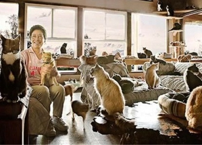 www.dustaan.com زن 50 ساله ای که با 130 گربه در یک اپارتمان زندگی می کند!
