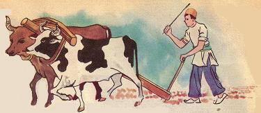 www.dustaan.com داستانک زیبای پیرمرد کشاورز و پسرباهوش او!