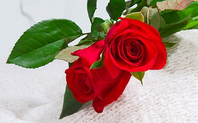 www.dustaan.com داستانک زیبا و اموزنده  :سرانجام صداقت