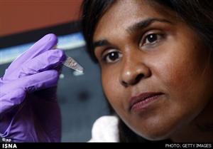 www.dustaan.com افزایش انتقال ویروس ایدز از طریق رفتارهای پرخطر جنسی