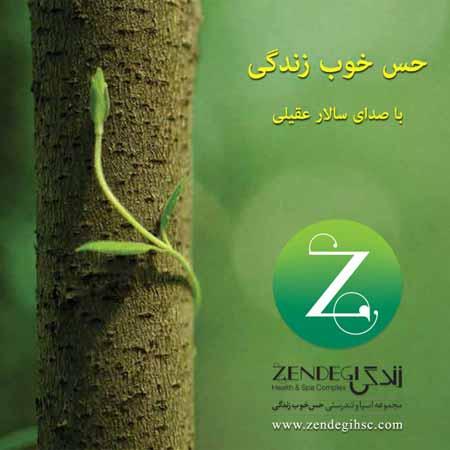 www.dustaan.com دانلود اهنگ فوق العاده زیبا از سالار عقیلی با نام «حس خوب زندگی»