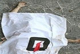 www.dustaan.com قتل زن جوان به دلیل سوءظن شوهر عراقی اش به وی