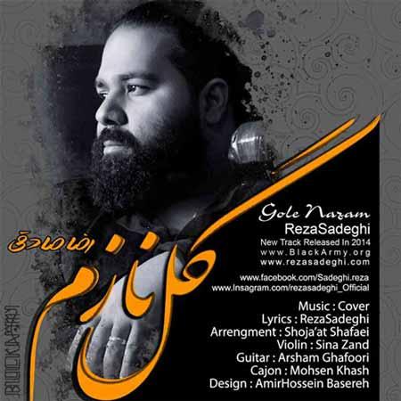 www.dustaan.com  دانلود آهنگ جدید وزیبای رضا صادقی با نام «گل نازم»