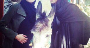 عکس/ پریناز ایزدیار و نیلوفر پارسا در کنار یک الاغ!