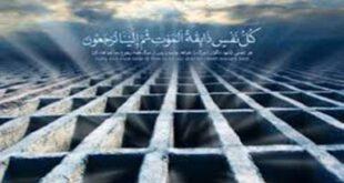 چه کسانی مستقیم از قبر به بهشت میروند؟!