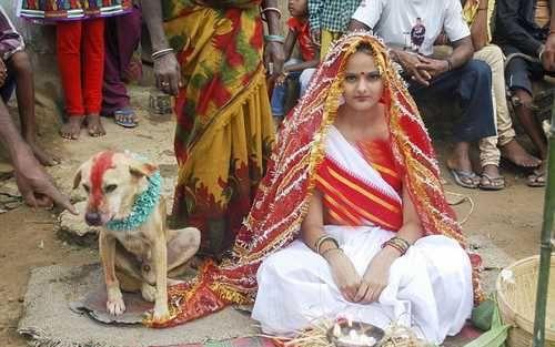 www.dustaan.com تصاویر/  ازدواج احمقانه دختر ۱۸ ساله با یک سگ ولگرد!