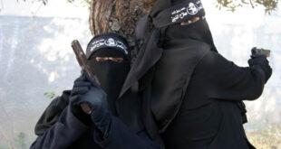 تصاویر/ دختران مبارز در غزه