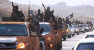 تصاویر/ مانور قدرت تروریست های داعش در شهرهای لیبی
