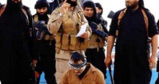 فیلم/ اعدام وحشیانه ۴ سوری توسط داعش (+۱۸)