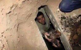 تصاویر/ نبش قبر نوه حضرت موسی کاظم(ع)توسط داعش