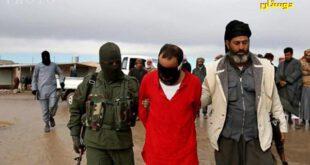 تصاویر ۱۸+ / اعدام وحشیانه عالم اهل سنت به دست داعش
