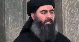 مکان ابوبکر البغدادی مشخص شد