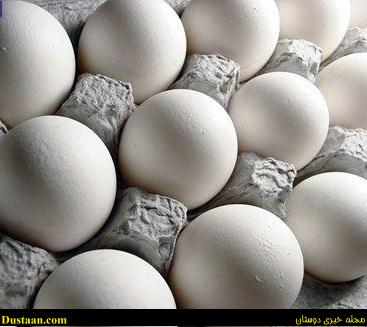 www.dustaan.com تخم مرغ را به هیچ عنوان داخل یخچال نگذارید!