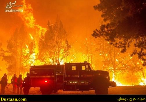 آتش سوزی شدید در جنگل های کالیفرنیا