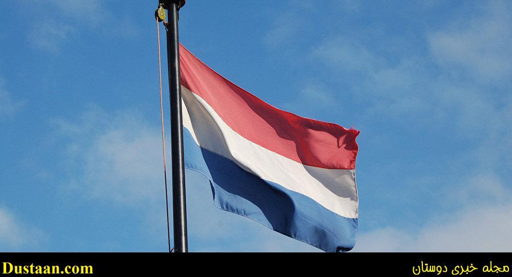 www.dustaan.com فروش تابلوی نقاشی جعلی به قیمت ۸ میلیون پوند در هلند!