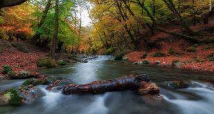 تصاویری زیبا از طبیعت پاییزی استان گلستان