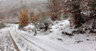 تصاویری زیبا از بارش برف در روستای زیارت