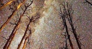 تصویری خارق العاده از کهکشان راه شیری بر فراز تگزاس