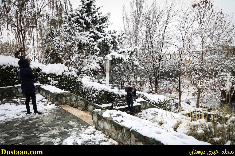 www.dustaan.com-تصاویر: بارش برف امروز تهران