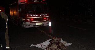 عکس: فرار راننده پس از تصادف مرگبار در اتوبان همت