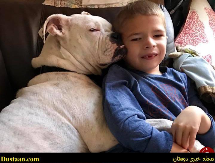 رابطه عجیب سگ ناشنوا با پسربچه لال! + عکس