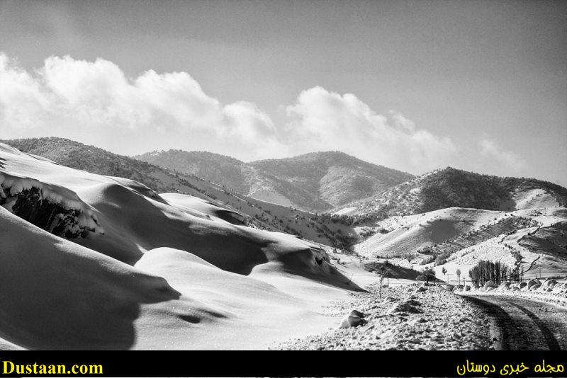 مجله اینترنتی جهانی ها تصاویر زیبا از طبیعت برفی کردستان - مجله اینترنتی دوستان