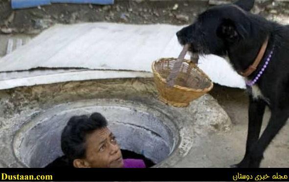 www.dustaan.com زوج عاشقی که ۲۲ سال است در فاضلاب زندگی می کنند! +تصاویر