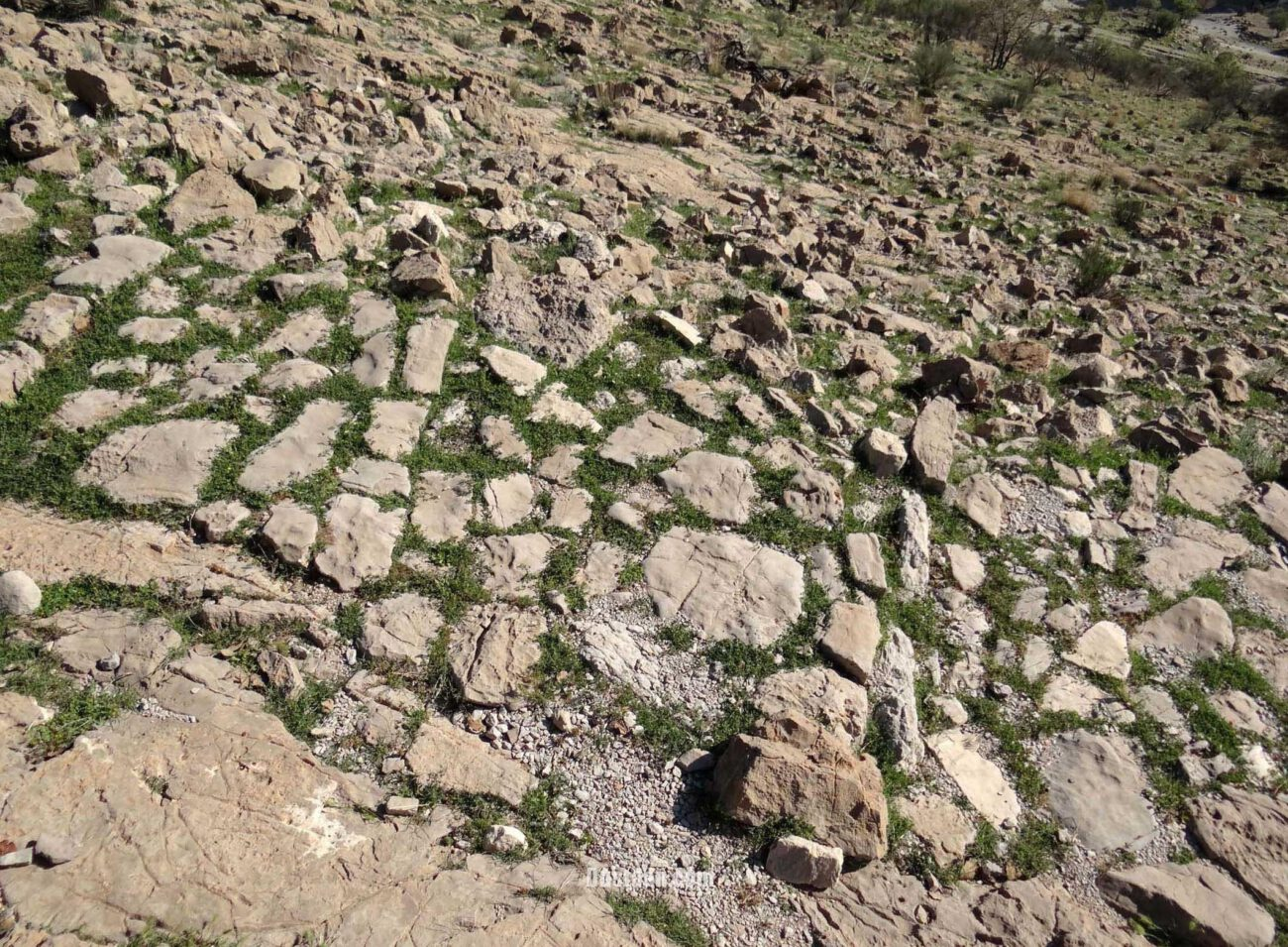 www.dustaan.com تصاویر: کشف جاده سنگفرش دو هزار ساله در ایران