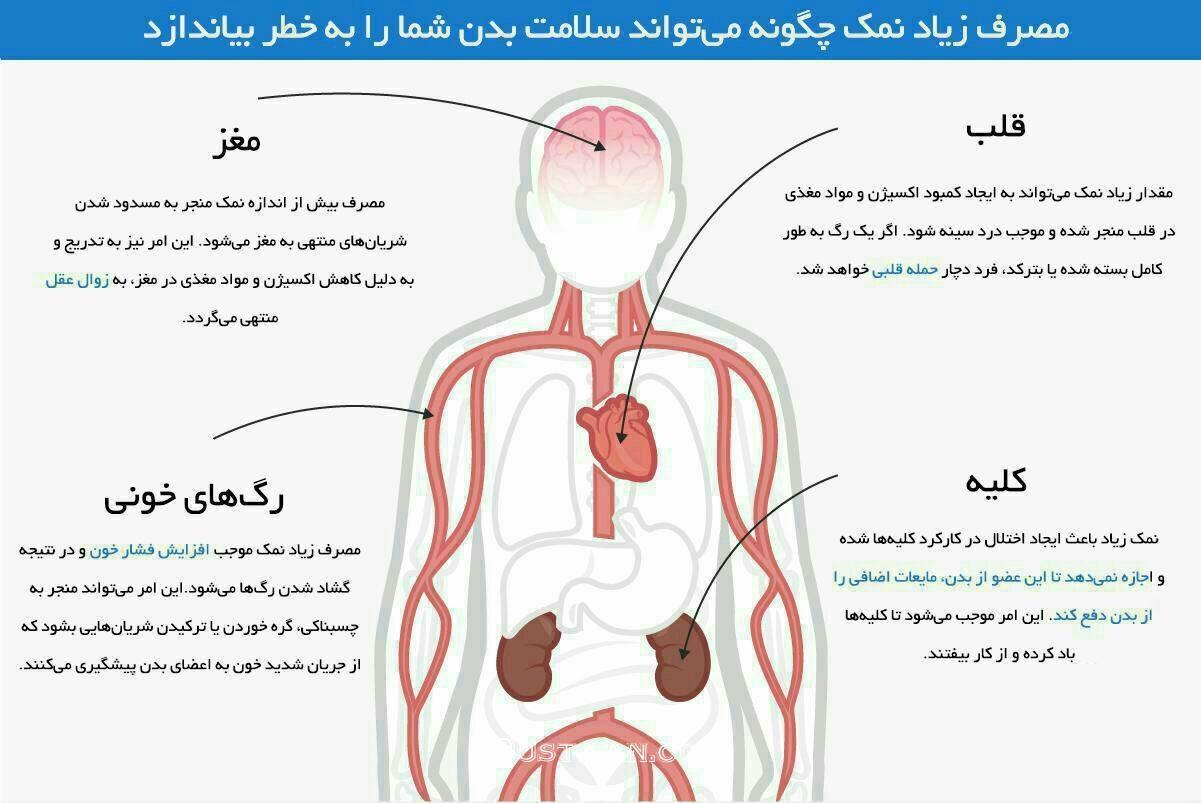 www.dustaan.com اثرات مخرب مصرف بیش از حد نمک برروی مغز ، قلب و کلیه ها