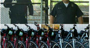 کاهش 67 درصدی سرقت ها به کمک پلیس های مقوایی! +عکس