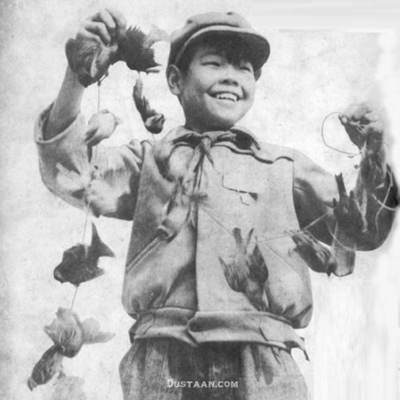 www.dustaan.com عاقبت کشتن هزاران گنجشک در چین! +عکس