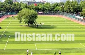 www.dustaan.com درخت 100 ساله وسط زمین فوتبال! +عکس