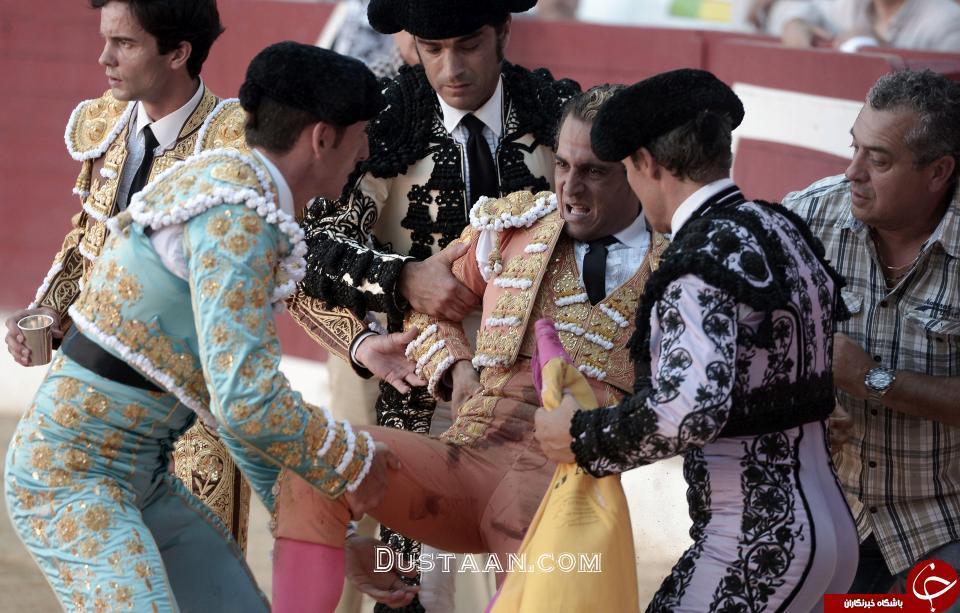 www.dustaan.com تصاویر: مرگ گاوباز اسپانیایی جلوی چشم تماشاچیان