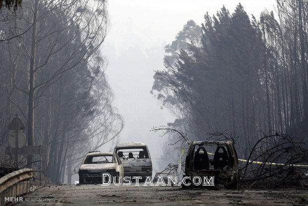 www.dustaan.com آتش سوزی گسترده در جنگل های پرتغال؛ 61 کشته تاکنون +تصاویر