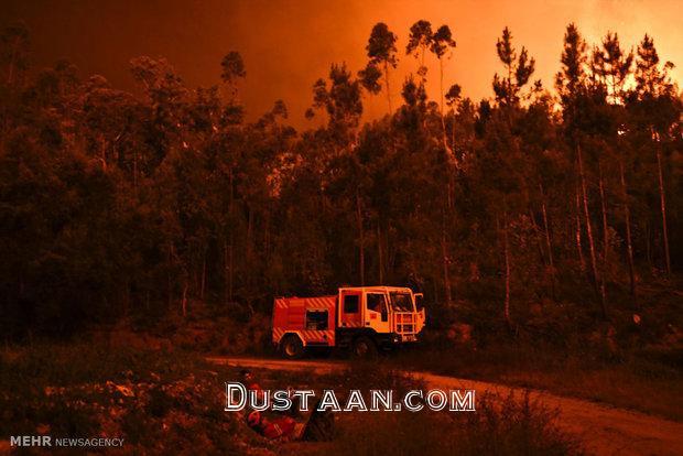 آتش سوزی در جنگل های پرتغال/تصاویر