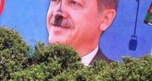 عکس: تصویری از اردوغان!